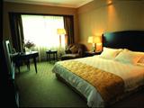 Grand International Hotel, hotels, hotel,20999_3.jpg