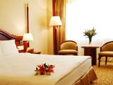 Gitic Riverside Hotel Guangzhou-Guangzhou Accomodation,6605_3.jpg